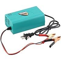 Générique Multipurpose Digital chargeur de batterie complète chargeur de batterie de voiture automatique Active chargeur de rechange Outil
