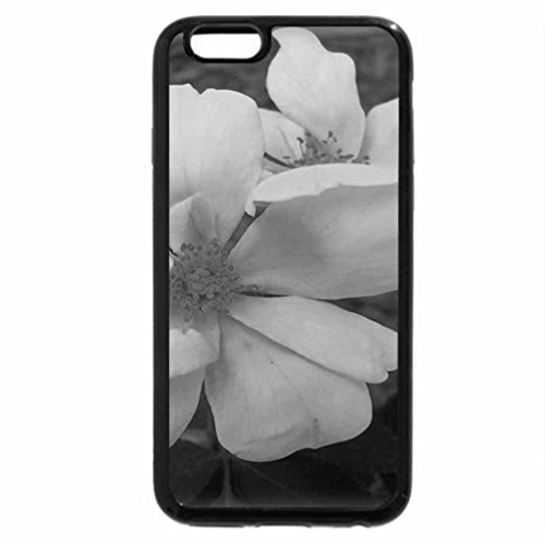 iPhone 6S Plus Case, iPhone 6 Plus Case (Black & White) - Yellow Knock-out Rose