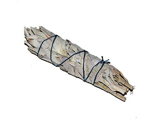 Räucherwerk: Mittlerer weißer Salbei-Stab von Native-Spirit.eu -- Smudge Stick ML, ~14cm (5-6 Inch) white sage (1) -
