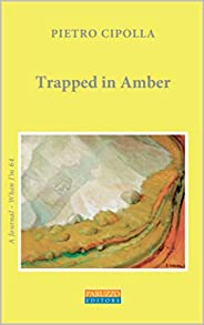 Trapped in Amber: A Journal - When I'm 64 (English Edition)