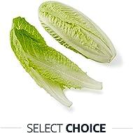 O'live Organic Cos Lettuce Each.