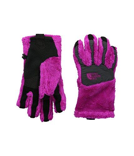 The North Face Denali Thermal Etip Glove (Big Kids) North Face Denali
