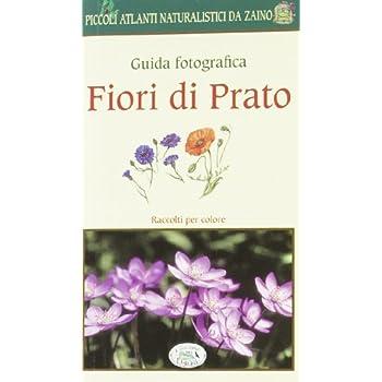 Fiori Di Prato. Guida Fotografica. Piccoli Atlanti Naturalistici Da Zaino