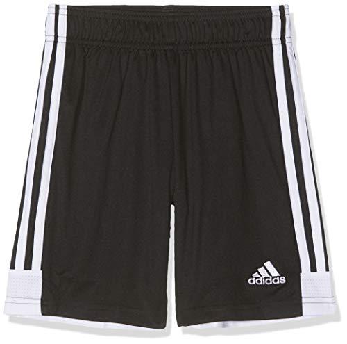 adidas Herren TASTIGO19 SHO Sport Shorts, black/White, XL -
