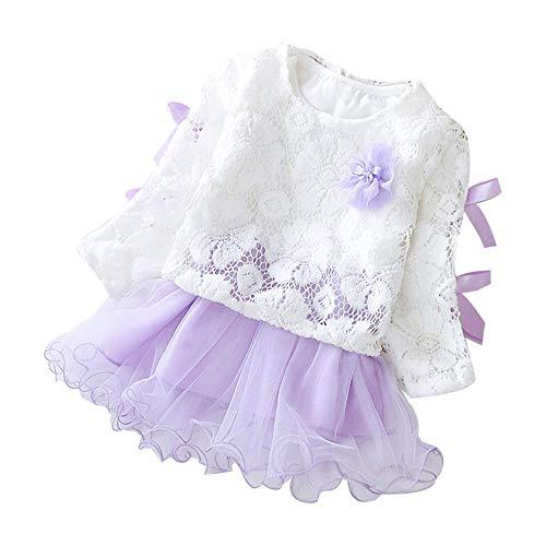 IZHH Baby Kinder Mädchen Frühling langärmelige Kleider, Baby Party Spitze Tutu B Prinzessin Kleid Outfits Karneval Ostern Kleidung(Lila,90/L)