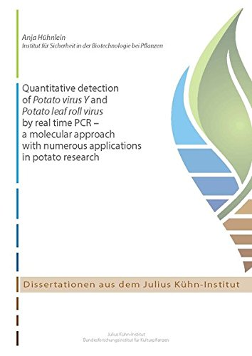 Quantitative detection of Potato virus Y and Potato leaf roll virus by real time PCR - a molecular approach with numerous applications in potato research (Dissertationen aus dem Julius Kühn-Institut)