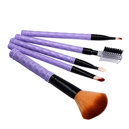 Daysing Make Up Pinsel Set 5 Stücke professionelles Kosmetikpinsel Pinselset Schminkpinsel lidschattenpinsel augen und wangen pinsel beauty tools