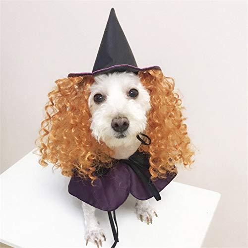 Kostüm Haar Lockigem Mit - TYJY Hundekostüme Halloween Lila Zauberer Lustige Hundebekleidung Mit Lockigem Haar Hut Cosplay Hund Kostüm Für Haustier Hund Geschenk