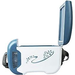 LZY Rui Portable Car Réfrigérateur, Réchauffeur & Glacière, Congélateur Compact Double Usage pour Voiture 12V avec Bandoulière pour Camping en Plein Air Voyage Pique-Nique