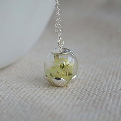Limonium Vraie Fleur Brillent dans le Noir Argent Sterling 925 Chaîne Colliers avec pendentifs