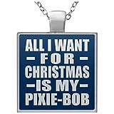 Designsify All I Want for Christmas is My Pixie-Bob - Square Necklace Royal/One Size, Kette Silber Beschichtet Charme-Anhänger, Geschenk für Geburtstag, Weihnachten