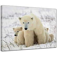 Bilderdepot24 Impression d art - Ours Polaire avec Ses oursons - 50 x 40 cm 2b71a4523cf