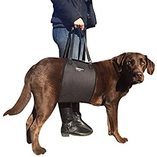 Labra Veterinarian Approved Dog Canine K9 Sling Lift Adjustable Straps Support Harness Helps with Loss of Stability caused by Joint Injuries and Arthritis ACL Rehabilitation Rehab Medium Black