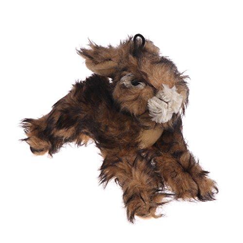 autone Plüsch Hundespielzeug Hase, Glitschige Kaninchen Kauen Pet Spielzeug, Bite Squeeker Animal Sound für Hunde Katzen Welpen -