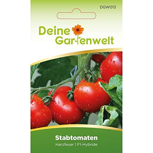 Stabtomaten Harzfeuer F1 Tomatensamen   Samen für Tomaten   Stabtomatensamen   Saatgut für Harzfeuertomaten