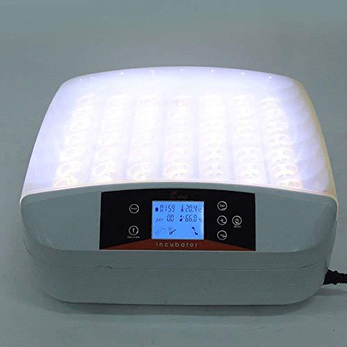56 digital incubatrice di uova a temperatura controllata con controllo automatico della temperatura dell'uovo per anatra di pollo uovo di oca di uccello pollame con la luce