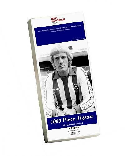 photo-jigsaw-puzzle-of-soccer-football-league-division-one-brighton-and-hove-albion-photocall