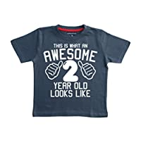 THIS WHAT AN AWESOME 2 YEAR OLD LOOKS LIKE Navy Boys 2nd Birthday T-shirt In Size 2-3 Years With A White Print