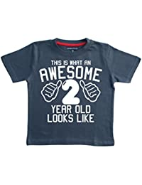 Edward Sinclair This What an Awesome 2 Year Old Looks Like Navy Boys 2nd Birthday T-Shirt in Size 2-3 Years with A White Print