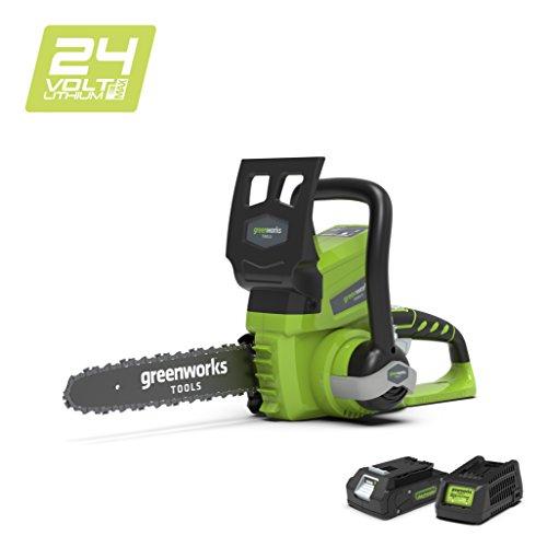 Greenworks Tronçonneuse sans fil sur batterie 25cm 24V...