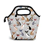 NiWCGP Chihuahua-Hundebrille Isolierte Lunch Tasche Lunch-Boxen Handtasche mit Reißverschluss für Outdoor Picknick Frauen Kinder