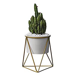 catchermy keramischer blumentopf mit geometrische metall pflanzenst nder dreieckige st nder. Black Bedroom Furniture Sets. Home Design Ideas