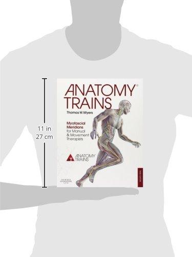 Zoom IMG-2 anatomy trains myofascial meridians for