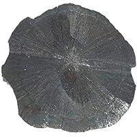 Pyrit Sonne 1 Unikat Sie Hat ca. 113 g. Seine ca. B 9.3.H 8.0.T 0.7 cm. preisvergleich bei billige-tabletten.eu