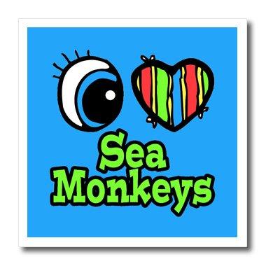 3dRose ht_106498_1 Bright Eye Heart I Love Sea Monkeys-Aufbügeln, für Material, 20,3 x 20,3 cm, Weiß