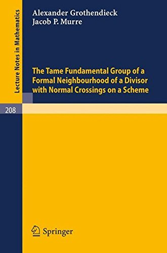 The Tame Fundamental Group of a Formal Neighbourhood of a Divisor with Normal Crossings on a Scheme (Lecture Notes in Mathematics) por A. Grothendieck