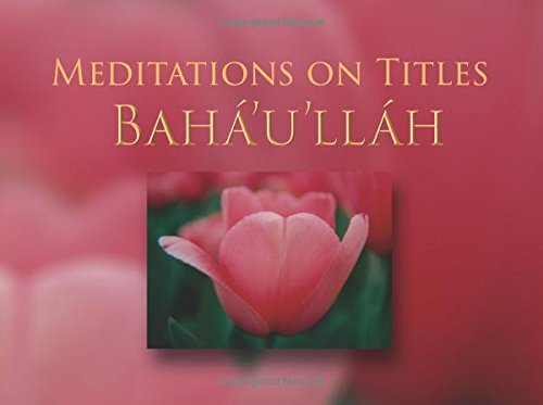 Meditations on Titles of Baha'u'llah por Tim Perry