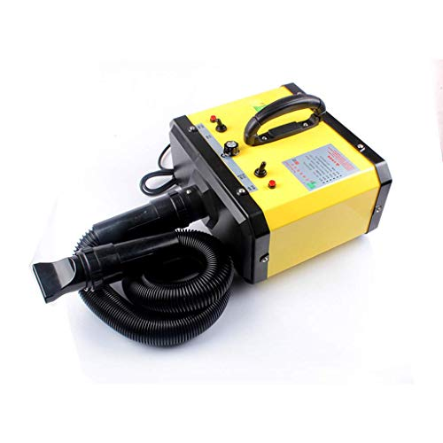 H.JPT Pet Dryer Shop Dedicated High Power Dog for Water Blowing Machine Dual Motor Mute Drying Hair (Color : Yellow) -