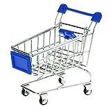 Newin Star Mini Warenkorb Mini Supermarkt Einkaufswagen Modell Spielzeug für Kinder Rollenspiel Blau