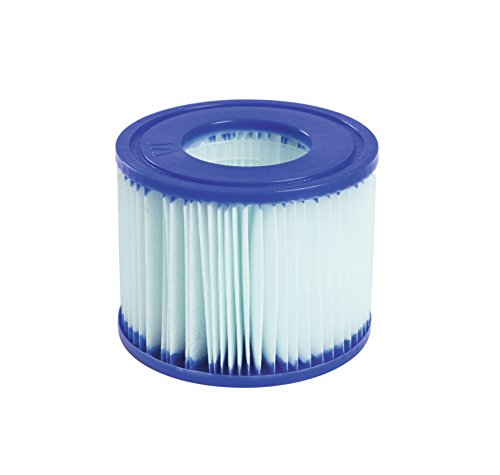 Bestway Lay-Z-Spa Antimikrobielle Filterkartuschen, Gr. VI, Doppelpack