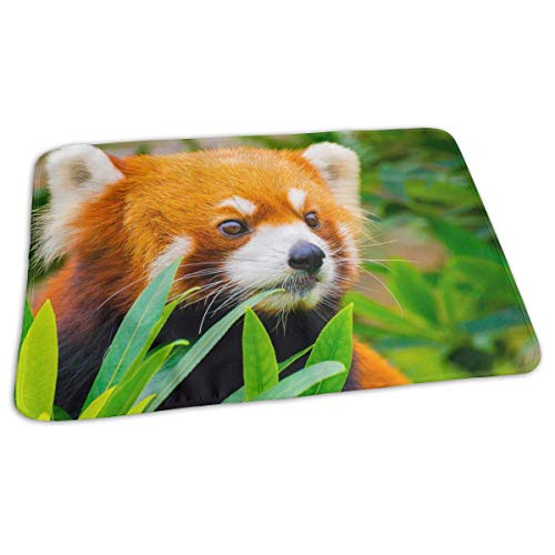 Voxpkrs Red Panda Portable Changing Pad,Reusable Unisex Baby Soft Changing Mat with Reinforced Seams