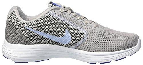 Nike Damen Wmns Revolution 3 Laufschuhe Mehrfarbig (Wolf Grey / Aluminum / Black / Blue Tint)