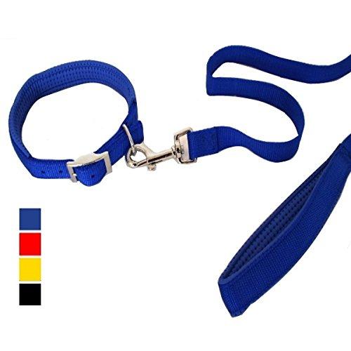 Parure guinzaglio e collare in nylon imbottiti - Set per cane, completo di imbottitura nel collare e nel manico, in più colorazioni (Nero, 2.5x120 cm) - Collare K9 Pelle