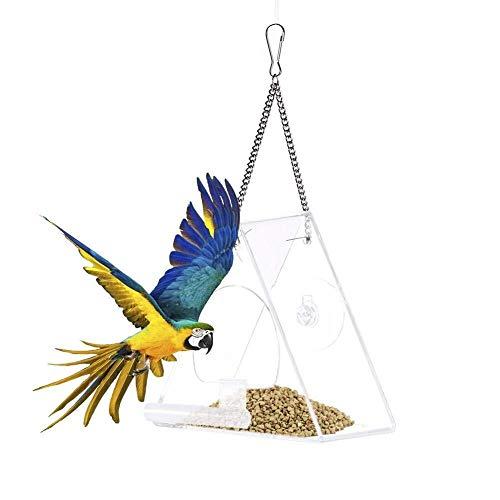 Vogelfutterhäuschen Hängende Vogelfutterhäuschen Stationen Vogelfutterhäuschen Saatgut Eichhörnchenfest Vogelfutterhäuschen Mast Vogelfutterhäuschen Ständer Vogelfutterhäuschen Fensterabsaugung Vogel -