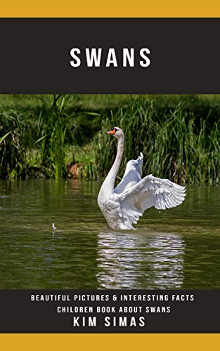 Swans: Beautiful Pictures & Interesting Facts Children Book About Swans Epub Descarga gratuita