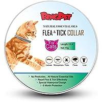 BINGPET Collar de pulgas para gatos y garrapatas, peine para eliminar pulgas y desechos –