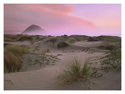 Global Gallery Kunstdruck Morro Rock at Morro Bay, California-Papierkunst 18In x 14In -