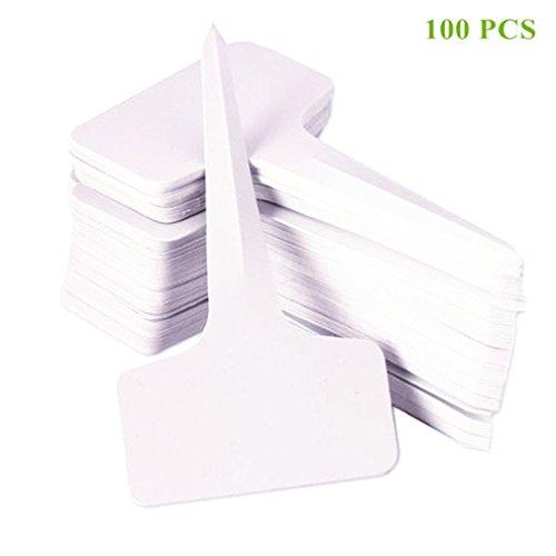 Qiorange étiquette 100 pièces 6 x10cm plant jardin T label marque Blanc (100 Pcs Blanc B)