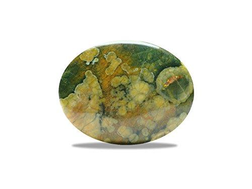 Riolita–jaspe de los bosques tropicales Mineral Piedra Natural lithotérapie.–canto
