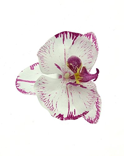 zacs-alter-egor-orchid-on-concord-clip-brooch-pin