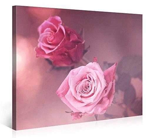 Premium Kunstdruck Wand-Bild – Two Pink Roses – 100x75cm Leinwand-Druck in deutscher Marken-Qualität – Leinwand-Bilder auf...