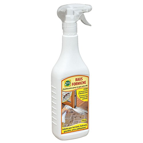 LGVSHOPPING Raus Hormigas Casa 750 ML Spray Disabituante Repelente Natural para Hormigas