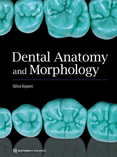 Dental Anatomy and Morphology