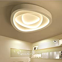 Lilamins Luces LED Lámpara de techo dormitorio techo personalidad Light-Artistic creatividad cálido salón romántico, modernas lámparas de luz blanca grande 60cm 2-Tone-Kwong