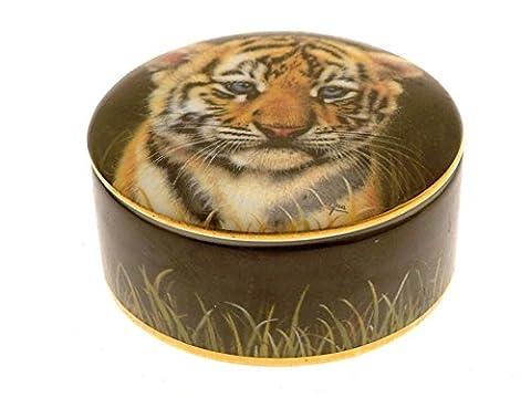 Cubs de la Big Chats Boîte à musique Petit tigre gb322