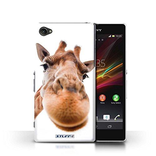 Kobalt® Imprimé Etui / Coque pour Sony Xperia Z1 Compact / Petit lapin curieux conception / Série Animaux comiques Museau de giraffe